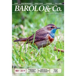 Barolo & Co. vol. 3/2019 - PDF