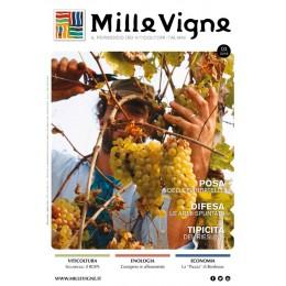 Millevigne vol. 3/2016