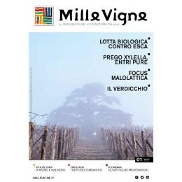Millevigne vol. 1/2017