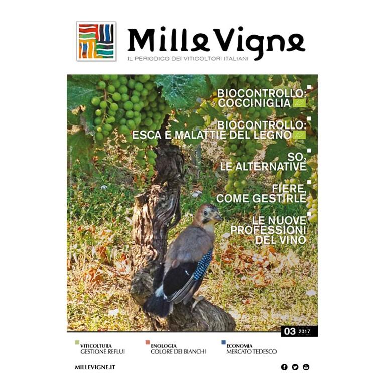Millevigne vol. 3/2017