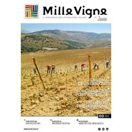 Millevigne vol. 3/2018