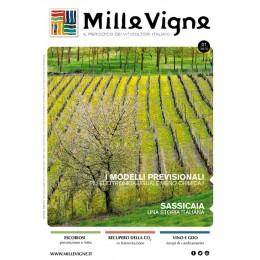 Millevigne vol. 1/2013