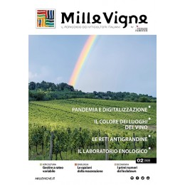 Millevigne vol. 2/2020 - PDF