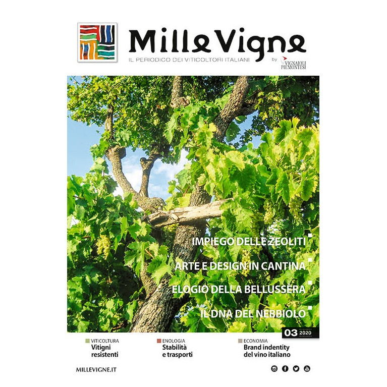 Millevigne vol. 3/2020 - PDF