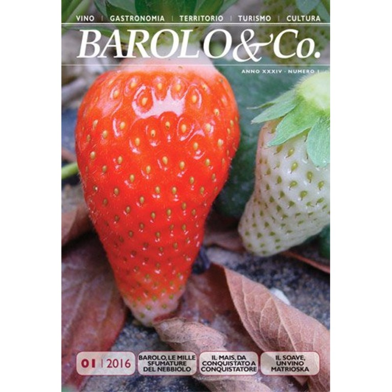 Barolo & Co. vol. 1/2016 - PDF